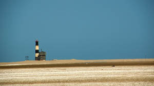 Postkarten - Idylle am Pelican Point